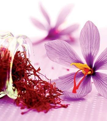 اسید هیومیک برای زعفران