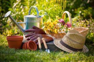 باغداری ارگانیک