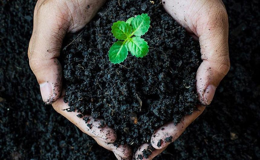 اسید هیومیک و اصلاح خاک