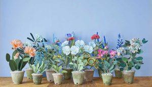 کود تقویتی برای گلهای آپارتمانی