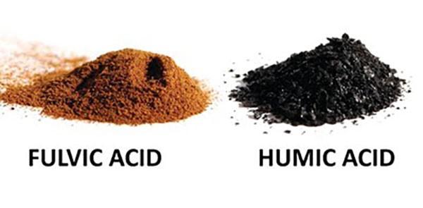 تفاوت فولویک اسید و هیومیک اسید